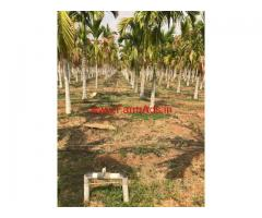 1 Acre well maintained Farm land for sale at Adivala - Hiriyur