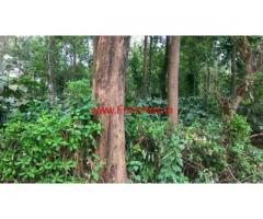 185 acres estate for sale at Madikeri - Coorg