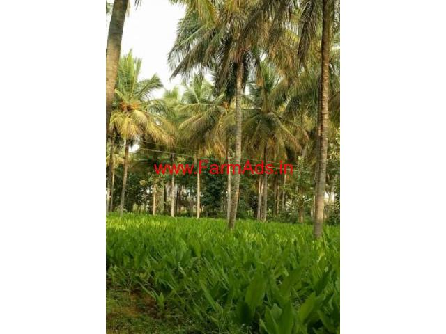15 Acres Coconut and Mango Farm for sale on Nanjangud Road