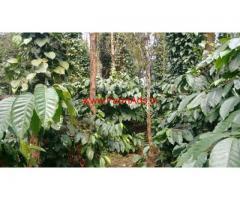 40 Acre Coffee Estate for sale at Kalasa - Mudigere