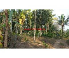 3.80 Acres Agriculture Land for sale near Mananthavady - Wayanad