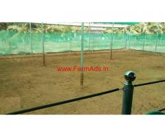 High-tech Cow Farm For Sale at Palakkad District