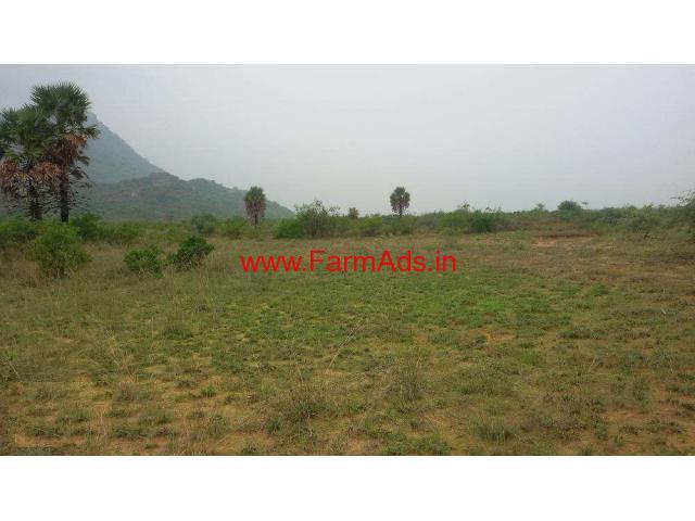 50.21 Acres Fertile Develeoped Farm Land for sale at Tirunelveli