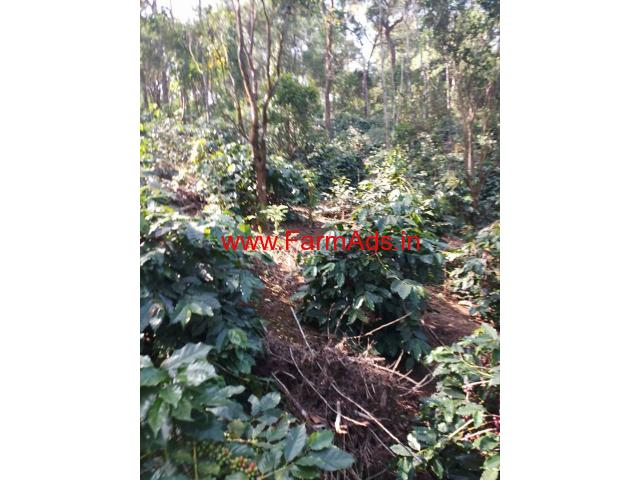 5 Acres Coffee Estate for sale at Somvarpete - Kodagu
