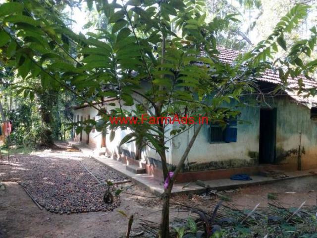 Small Farm for sale at Busmadka - Sulya