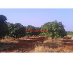 140 Acres of Agriculture farm land for sale at near Penukonda