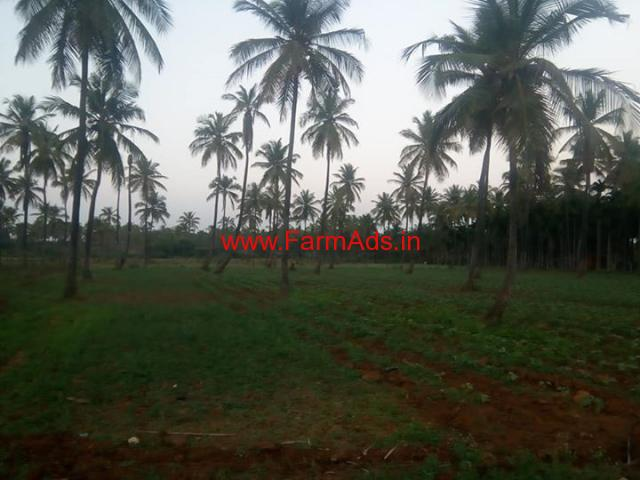 14 acre agricultural land  for rent or lease at Kadur, Chickmaglur
