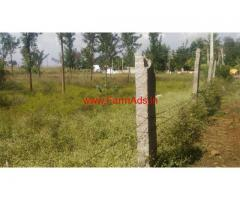 3.75 acres agricultural land available for sale at Bagepalli