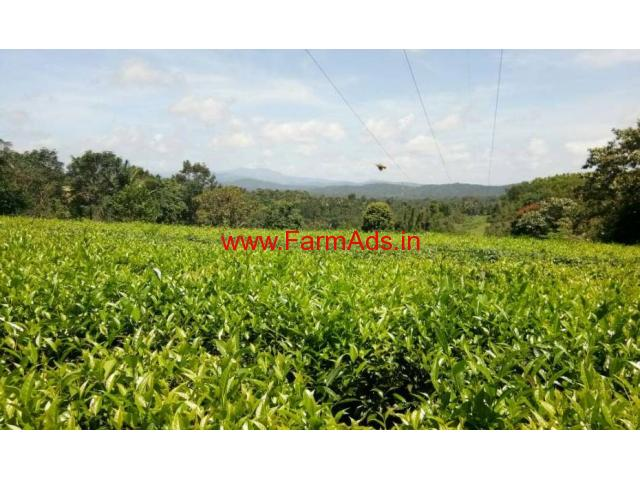 7 Acre Farm Land with Small House for sale at Payyampally - Mananthavady