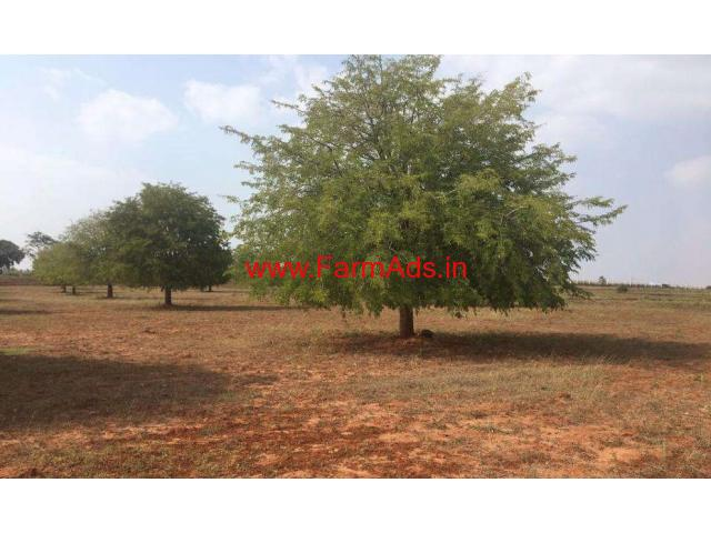 3 Acre Agricultural Farm land for sale in Thally towards jawalagiri