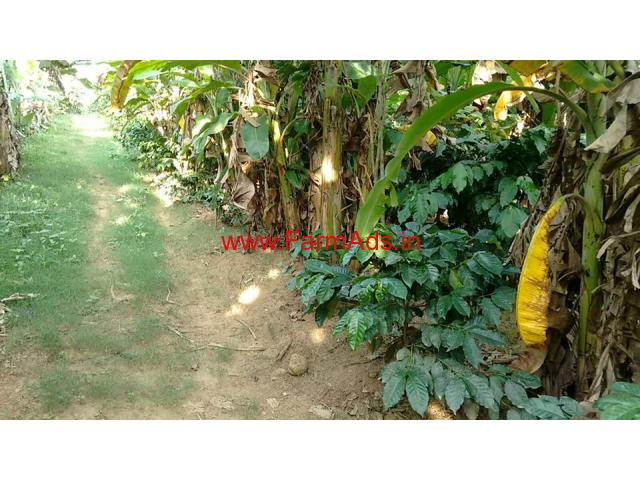 12 Acres Coffee Estate for sale in Belur - Hassan District
