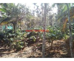 1.5 acre agricultural land for sale at Nadavayal - Wayanad