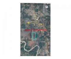 2.5 Acres Coconut Farm for sale at Chennarayapatna