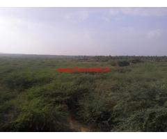 200 acres plain land for sale at Hassan
