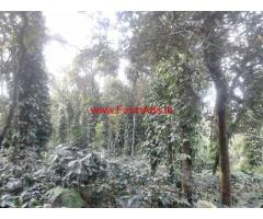 Coffee plantation for sale at Balehonnur - 3 Acres
