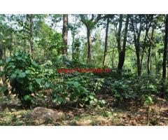 2.5 Acres Coffee Estate for sale in Chikkamagaluru