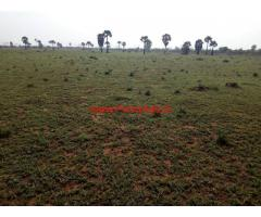 650 acre agricultural land for sale at Tirunelveli