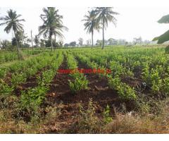 21 Gunta Farm Land for sale at Sathanur - Kanakapura