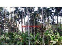 20 Acres developed farm land for sale at Udupi. Karje Brahmawara route