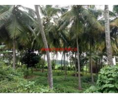 7 acres coconut farm for sale at Channapatna, 78 KMs from Bangalore