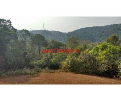 3 acre farm land for sale near Hettur - Sakleshpur