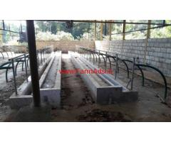 5.88 Acres Ready Dairy Farm for sale at Petri - Udupi