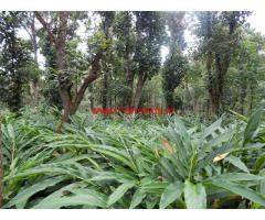 12 acer cardamom plantation for sale at Idukki