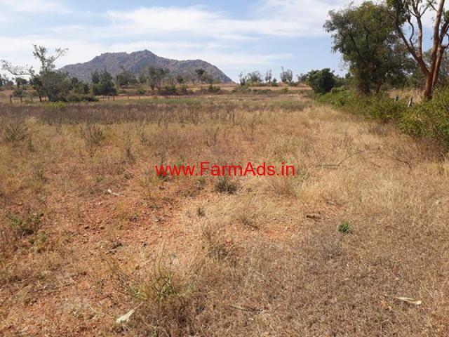 3.10 Acres Farm land for sale near Malavalli, 8 KMS from Malavalli