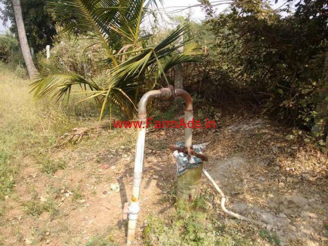 5 Acres Areca Farm Land for sale at Kyasapura - Chitradurga