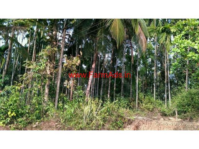 17 acres developed farm for sale on the bank of seetha nadi river, Udupi