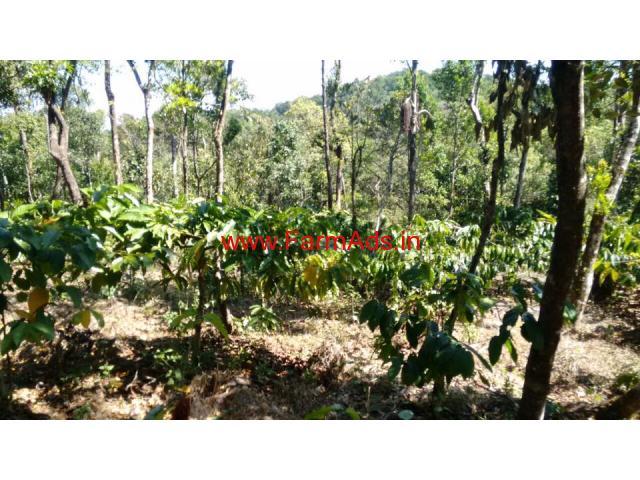 6 acre farm land for sale in mudigere , chikkamagluru dist