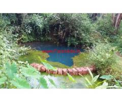 82 cents agriculture land for sale in farangipete