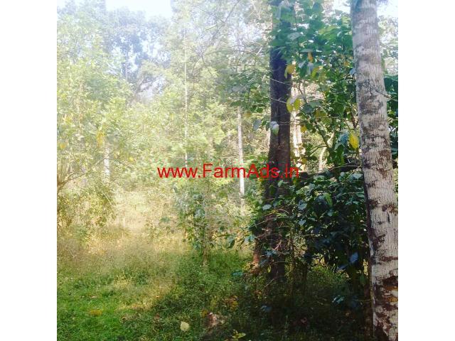 15 acre coffee estate for sale near to Kelgur tea estates - Mudigere