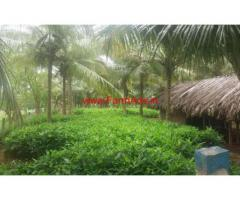 7.75 Acres Coconut Farm land with Farm House for sale at Chittur