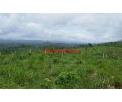 7 Acre Agriculture Land for sale near Mananthavady - Wayanad