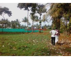 2.20 Acre Farm Land with Farm House for sale near T-Narsipura