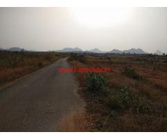 12.20 Acres Mango Farm for sale at Lakkireddipalli - Kadapa