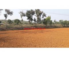 7 Acres farm land for sale at Denkenikottai (Tamil nadu)