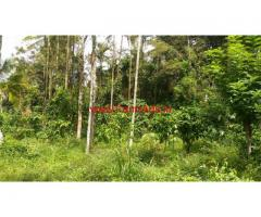 1 Acre 87 Cent Land in Wayanad.  8 Km from kalpetta town