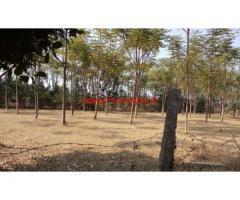 30 Gunta Farm Land for sale at Nelamangala