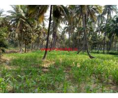 2.19 Acres Farm land for sale, 8 KMS from Sathnur Circle