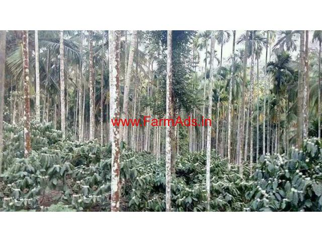 9 Acres Coffee Land with 2000 Sqft House for sale at Wayanad.