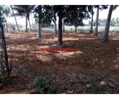 13 acre agricultural land for sale in karuthapillaiyur, Ambai