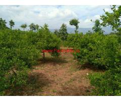 5 Acre agriculture land for sale in near vathalakundu.