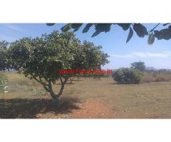 20 Acres Pomegranate Farm land for sale at Chitoor, KV Palli Mandal