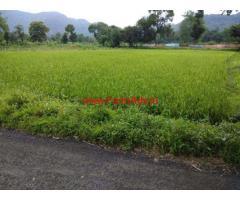 24 Gunta paddy field for sale near Karjat - Raigad