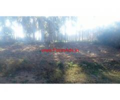 1 Acre Arecanut farm for sale at Kunigal on Bangalore - Mangalore Road