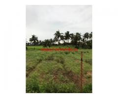 6.5 Acres Farm land for sale at Bandhalli - Hannur