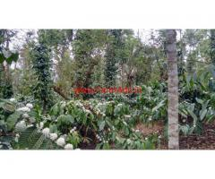 2 acre coffee estate for sale in sakleshpura . 7 Km from town