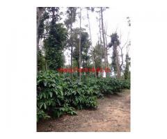 20 Acre Coffee Estate for sale at Sakleshpura